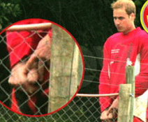prince-william-nude-sm.png